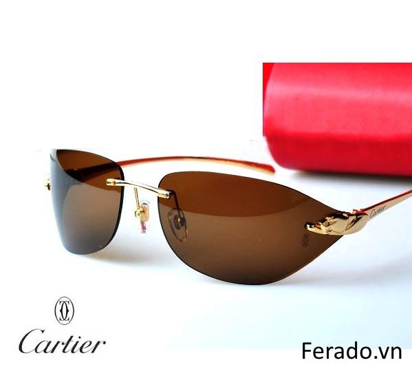 Kính thời trang cao cấp Cartier CT01
