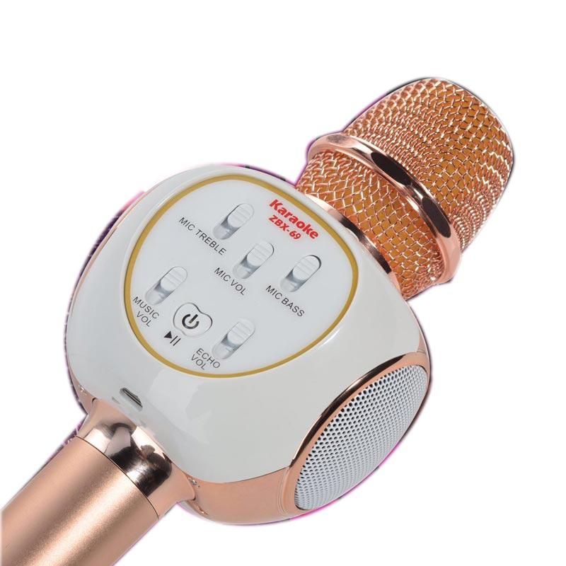 Microphone Karaoke Kèm Loa Anysing ZBX-69
