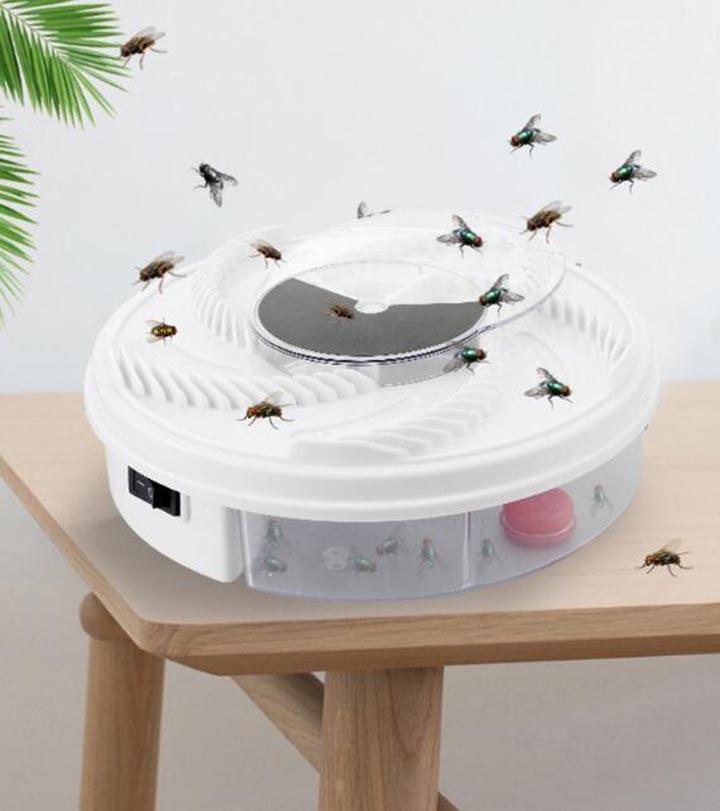 máy mắt ruồi
