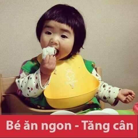 yến sào one nest